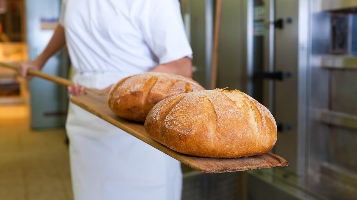 石垣島のおいしいパン屋をご紹介!島素材をつかった人気・老舗ベーカリー