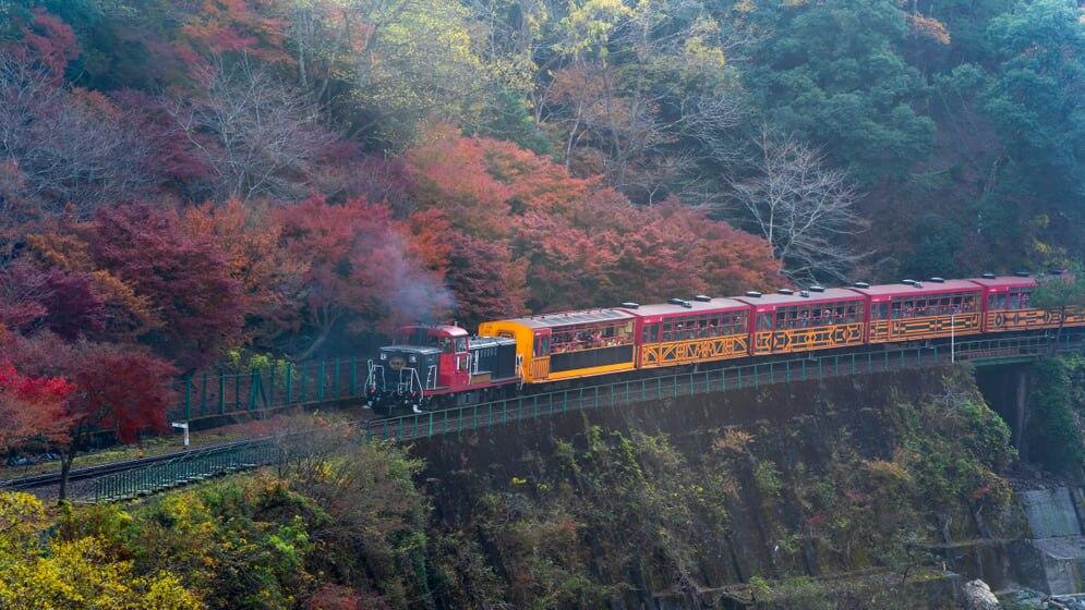 京都・嵯峨野でホテルを探そう!嵐山と隣り合う人気観光エリア