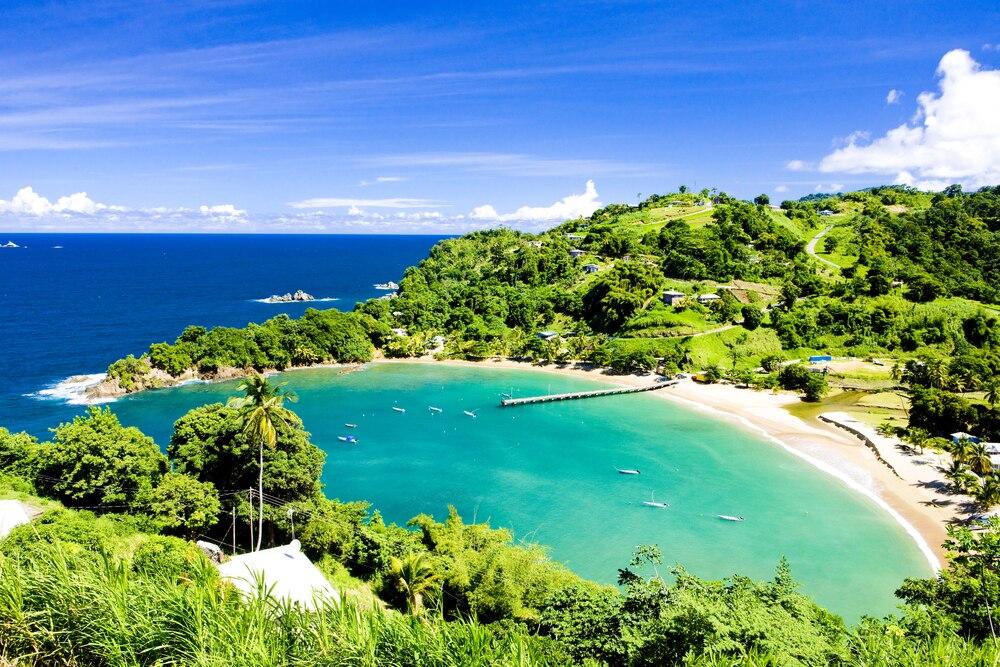 カリブの自然を味わい尽くそう!トバゴ島の魅力を満喫する観光スポット8選