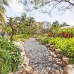 ケアンズボタニックガーデンズ|まるでジャングル。無料の熱帯雨林植物園