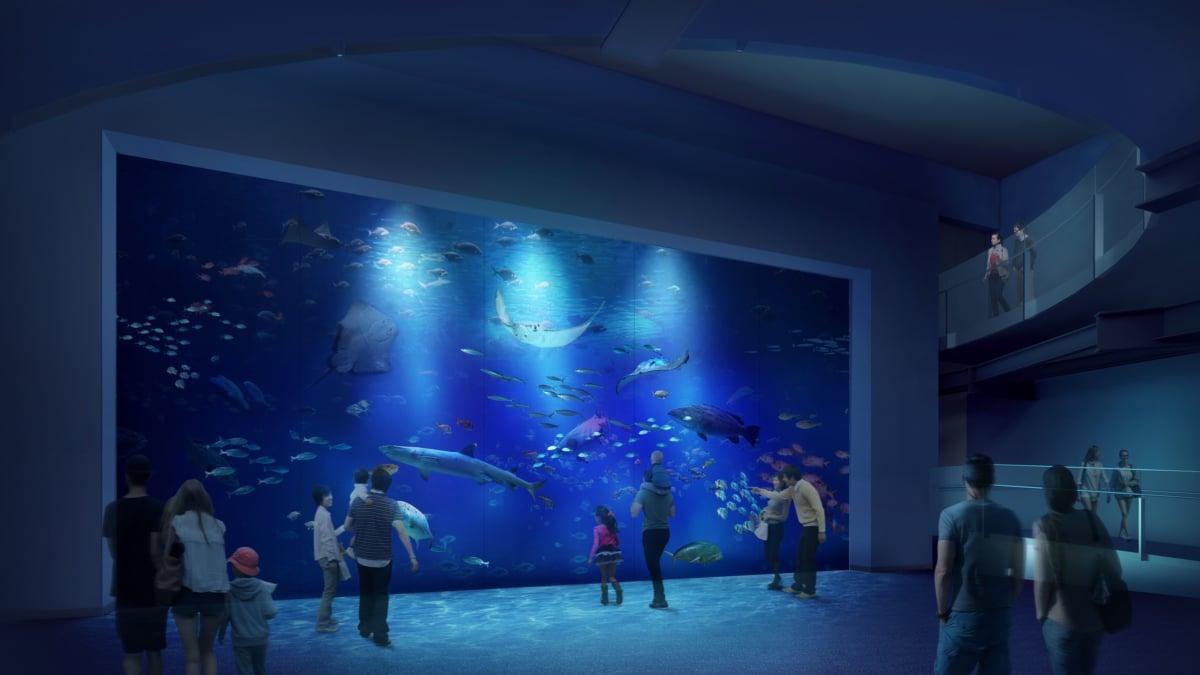 最大 水族館 四国